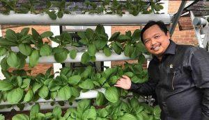 Selama 10 Tahun, Indonesia Kehilangan 5 Juta Petani